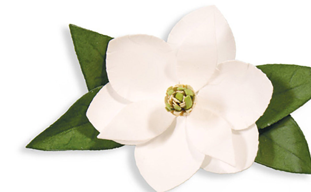 "The ""How-To"" on Create A Flower Series: S2-196 Magnolia"