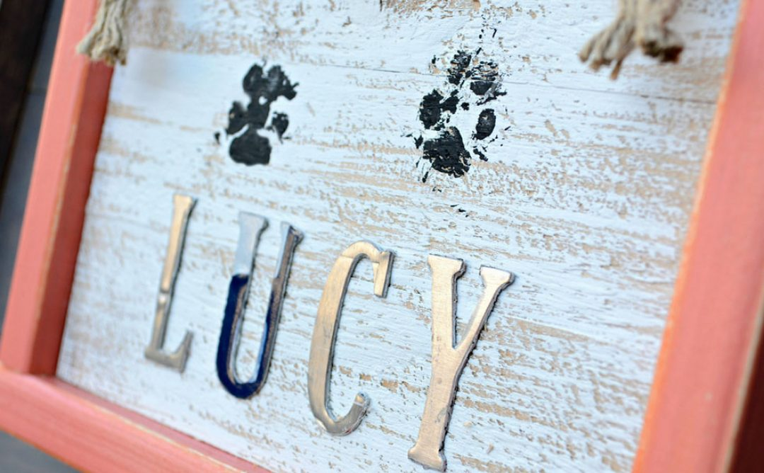 How To Make A Darling Paw Print Home Decor Sign