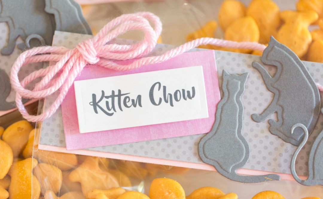 Video: Kitty Purr-fect Party Favor Bags