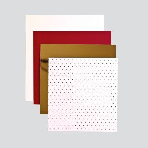 Spellbinders November 2018 Amazing Paper Grace Die of the Month is Here! #AmazingPaperGraceClubKit #SpellbindersClubKits