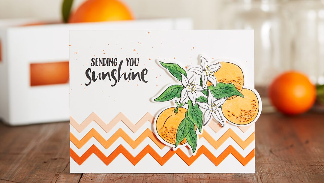February 2019 Stamp of the Month is Here - Orange Blossom
