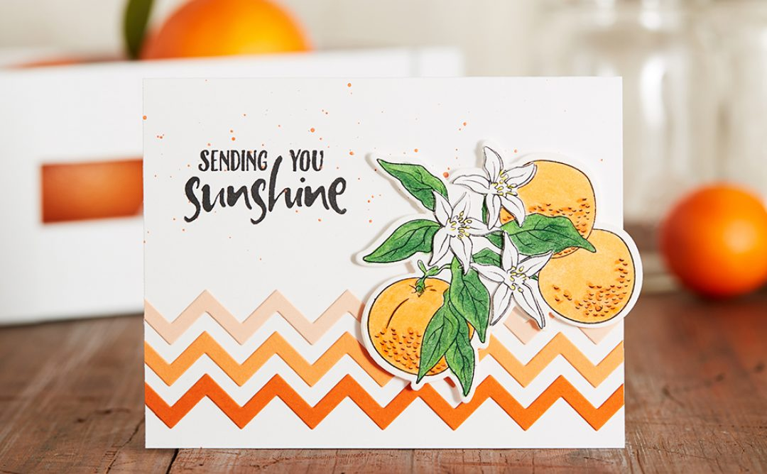 February 2019 Stamp of the Month is Here – Orange Blossom