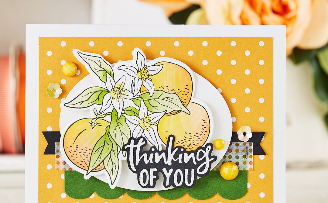 February 2019 Stamp of the Month is Here – Orange Blossoms